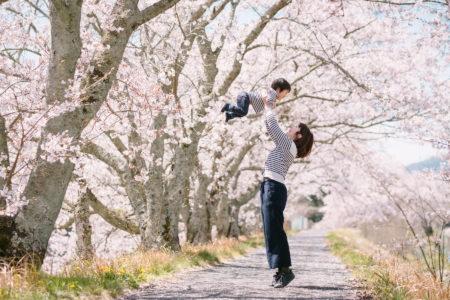 桜と一緒に家族写真を撮りませんか?